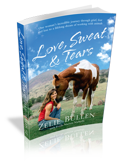 Love sweat tears the zelie bullen story biography